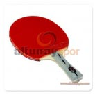 Three-Star Table Tennis Racket DHS